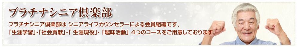 plutinum_banner